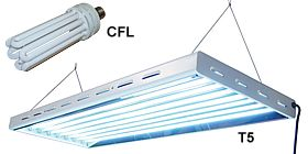 ACF flourescent grow lights